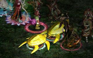 9.28ヘメ亀2