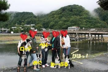 biwako089.jpg