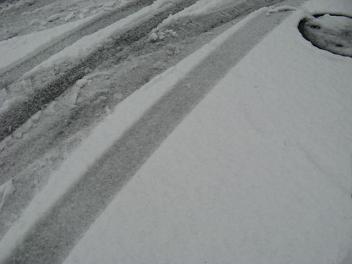 2008_02_09_snow.jpg