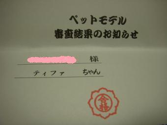 2193.jpg