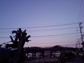CA380127.jpg