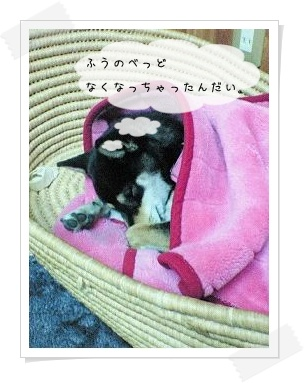 fuumoufu8.jpg