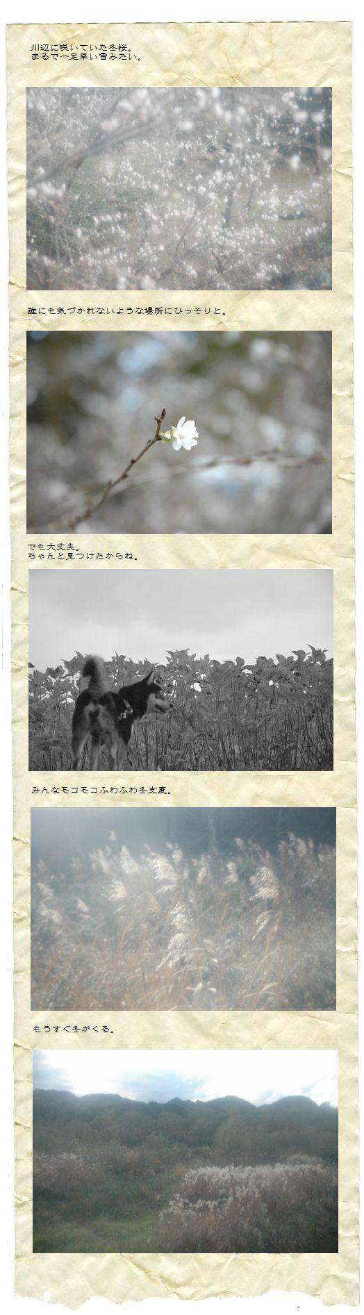 fuyujitaku.jpg