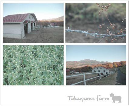 takayamafarm.jpg