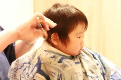 haircut002.jpg