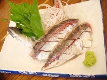 hatsushima012.jpg