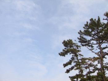 hatsushima015.jpg