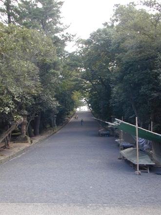 DSCN9433.jpg