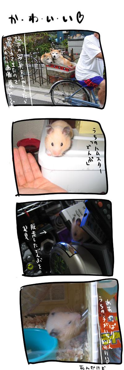 kyou323.jpg