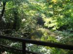 鶴の間眺め3