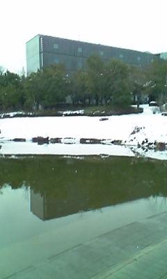 雪化粧キャンパス