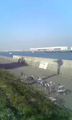 チャリたちと海と羽田空港