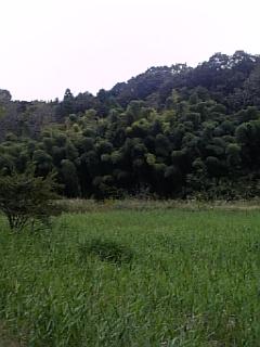 小山田の風景その3