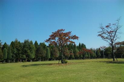 10/29 庭園内