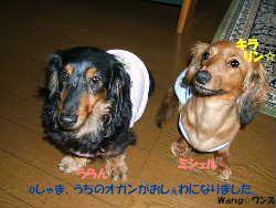 2006_07030020um.jpg