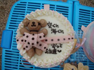 空海ケーキ