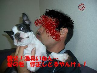 20061020131407.jpg