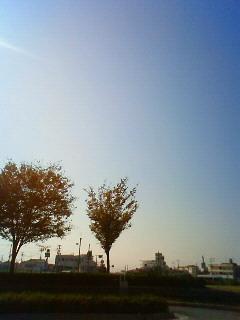 NEC_2469.jpg