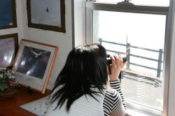 野鳥観察の家