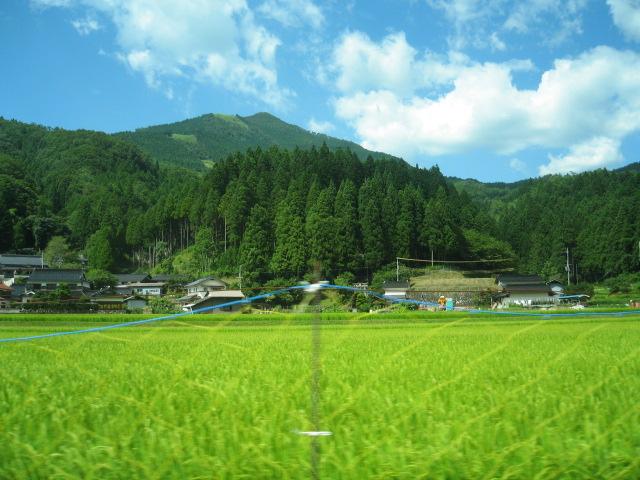 http://blog-imgs-23.fc2.com/l/i/s/lisachan/IMG_0385.jpg