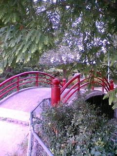 平野公園2