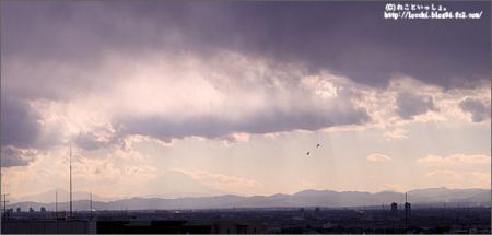 空と富士山と鳥。