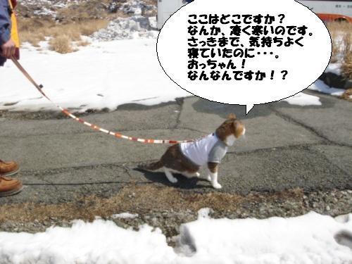 初の阿蘇山頂は