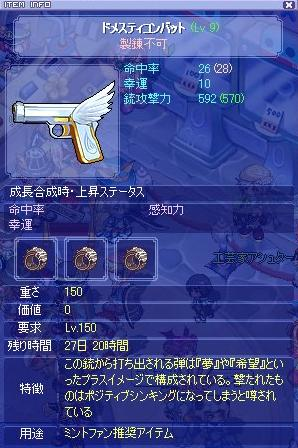 TS-銃1