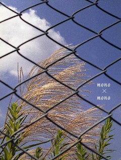 青空とススキと青いフェンス