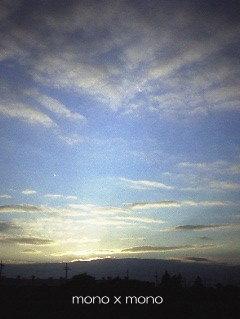 チビトラちゃんと一緒に見た夕陽