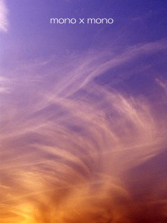 夕陽が空に描く雲の模様に言葉を失い ただ見惚れる