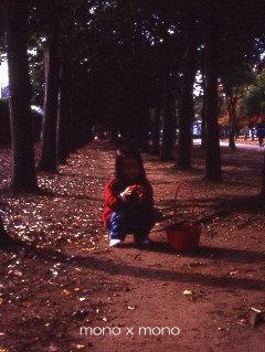 陽が傾いてきた公園にて夢中でどんぐり拾いを続ける娘