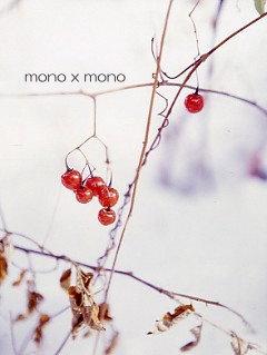 雪の中で見つけた赤い実はきらきら光って宝石みたい