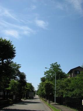 070616_昭島田中町_169