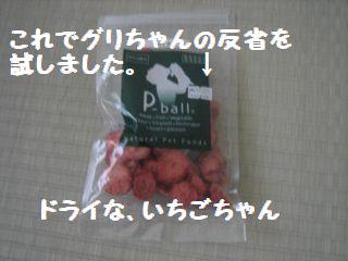 ドライなイチゴ