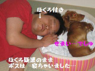 ほくろつき(寝る)