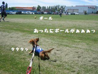 サッカー・キャンプ2