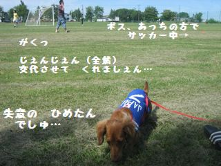サッカー・キャンプ11