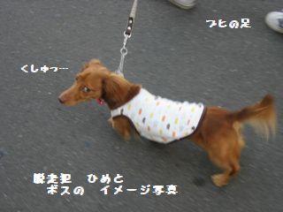 イメージ写真 くしゅっ byひめ