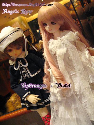 Hydrangea & Violet