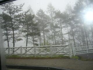 霧が・・・