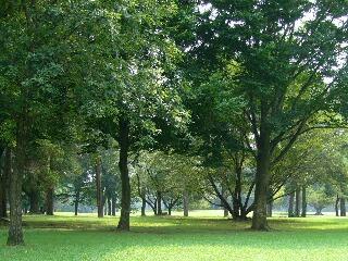 誰も居ない静かな公園