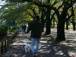 この景色は秋だね~