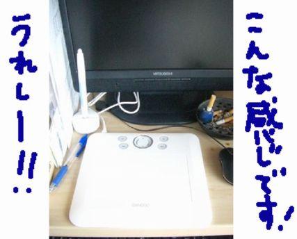 CIMG7266.jpg