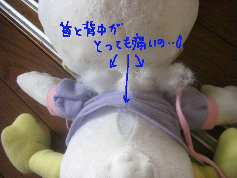 CIMG7824.jpg