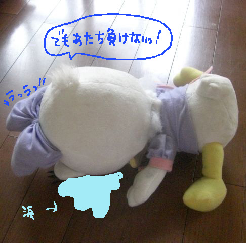 CIMG7825.jpg