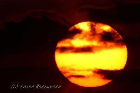1350mmの夕日