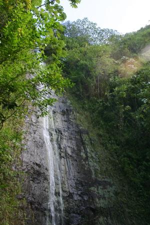 オアフの深い森・滝