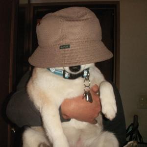 帽子マック01