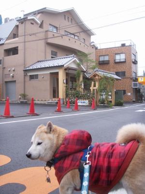 武蔵小山温泉01